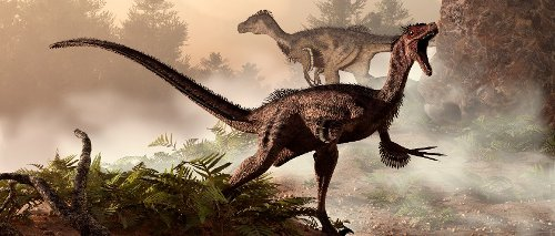 The scary truth about Velociraptors