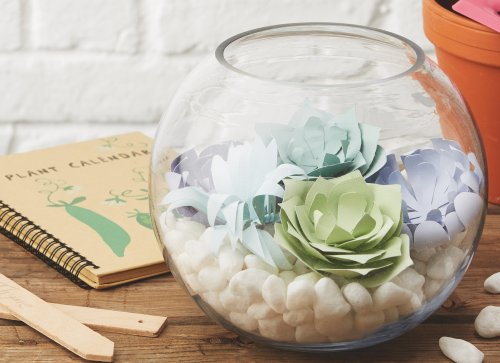Make a paper succulent!