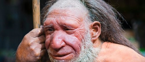 Neanderthals weren't just smart – they might have taught humans a thing or two