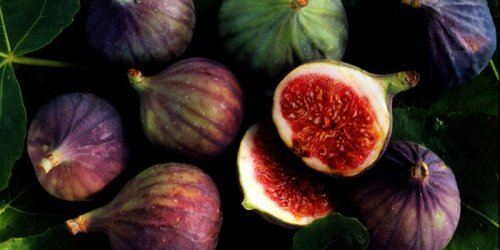 The health benefits of figs