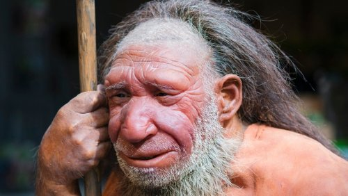 Neanderthals lost their Y chromosome to modern humans