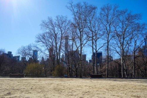 Central Park New York – Ein Spaziergang