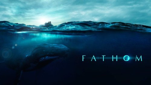 'Fathom,' a new humpback whale documentary, premieres on Apple TV+
