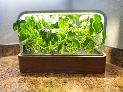 Review: ēdn's SmallGarden combines mess-free indoor gardening with HomeKit