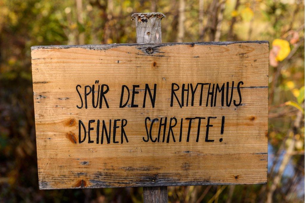 Wandern in Österreich - cover