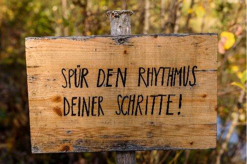 Wanderungen in Niederösterreich Tipps | Reiseblog & Fotografieblog aus Österreich