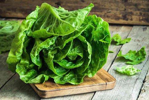 Come mantenere a lungo fresca l'insalata