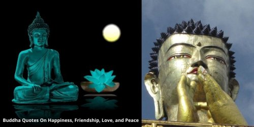 55 Buddha Quotes On Happiness, Friendship, Love & Peace