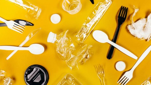 Meet the Small Businesses Improving Their Bottom Lines by Ditching Single-Use Plastics