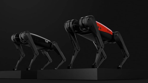 Engineers develop AlphaDog, the fastest robodog on the market