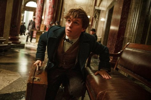 Fantastic Beasts: The Secrets of Dumbledore has a confirmed release date