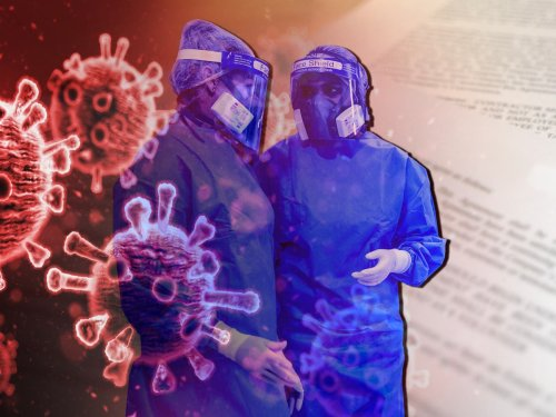In 2005 a blueprint was drawn up to fight a coronavirus – then it was 'lost'