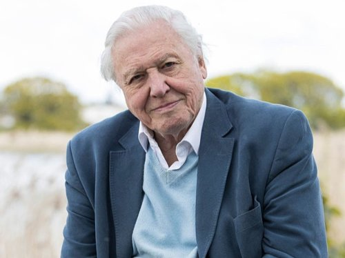 G7 climate decisions among 'most important in human history,' says David Attenborough