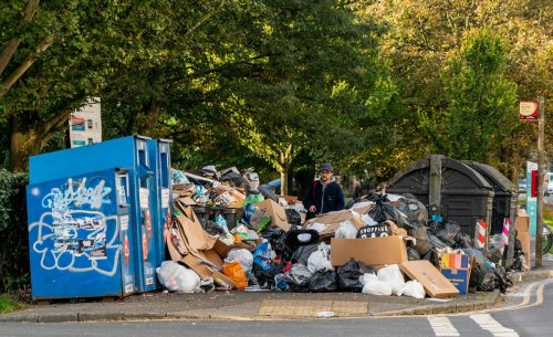 Private firms drafted in to tackle rubbish amid Brighton bin strike