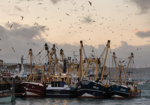 How 'sustainable' seafood is contributing to the climate crisis