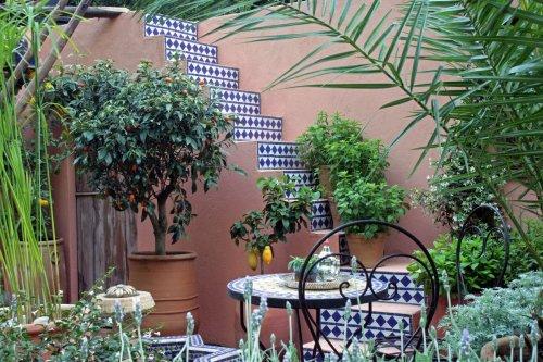 How houseplants can make you feel like you are abroad