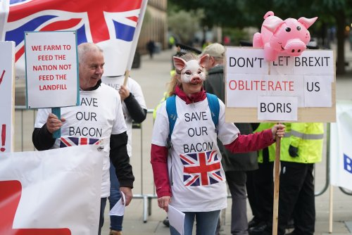 Pig farmer who voted for Brexit says thought it would make people 'more patriotic'