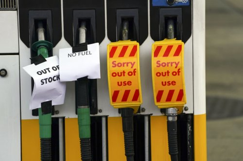 Army could be called in as half of local petrol stations out of fuel