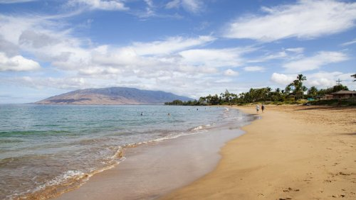 'So busy, it feels like Christmas' - everyone's going to Hawaii, and the resorts aren't ready