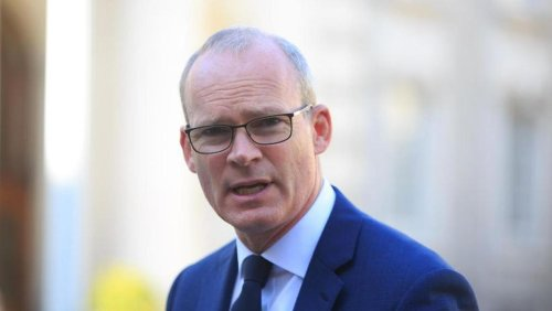 Simon Coveney survives Dáil no confidence motion over botched Katherine Zappone appointment