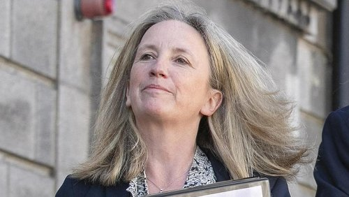 Gemma O'Doherty tells High Court application by Beaumont Hospital for injunction is 'spurious and outrageous'