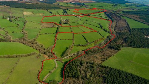 Large Cork grazing farm guided at €7,000 plus per acre