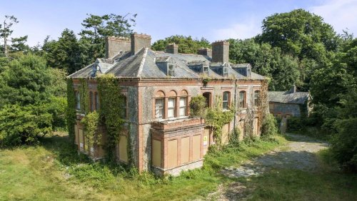 Victorian mansion in Co Laois on sale for just €150,000 – but there's a catch