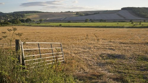 Margaret Donnelly: Farmers need clarity and honest answers on how convergence will work