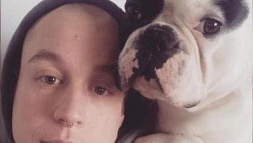 'He's sitting on the mat now catching some sun' – relief at return of dog stolen by hammer-wielding thief