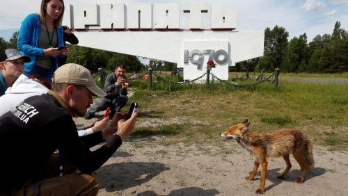 Tourists flock to Chernobyl as TV show success drives tourism boom