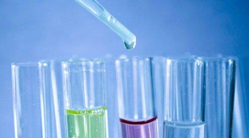 Tatva Chintan Pharma Chem IPO share allotment status: Here's how to check your shares