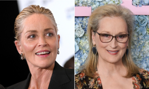 Sharon Stone Warns Against Idolizing Meryl Streep: 'There Are Other Actresses Equally as Talented'