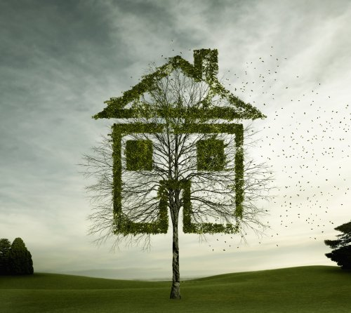 Who should be responsible for making rented homes in Britain greener?
