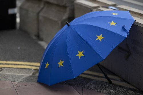 Rejoining EU should be a long-term goal, Labour frontbencher suggests