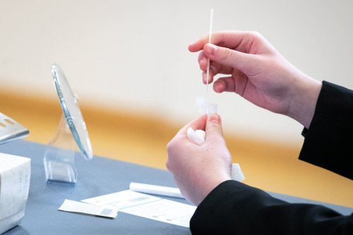 Lack of in-school testing will cause blind spot for tracking Covid spread, scientists warn
