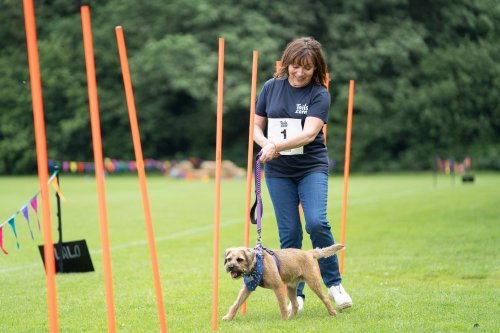 Lorraine Kelly: We need better dog theft rules, the police treat it like you've lost your phone