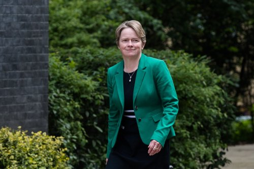 """Dido Harding wants to make """"NHS less reliant on foreigners"""" if she gets top job heading it"""