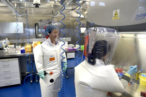 Author claims Wuhan lab catastrophe is 'how virus leaked' in explosive new book on Covid