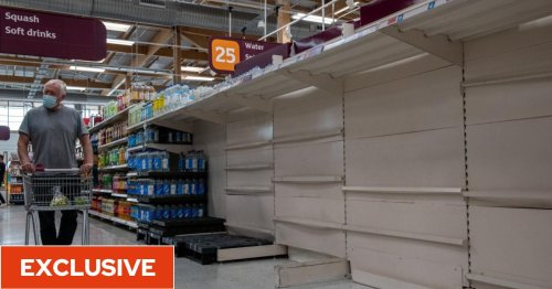 Brexit impact 'will get worse' with supermarket shops to cost more and products set to vanish