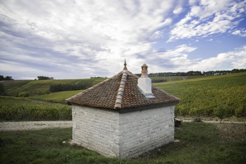 Travel to France is back this lesser-known part of Champagne is ideal for a quick visit