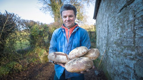 How I grew an acre of wheat, milled the flour and baked my own bread