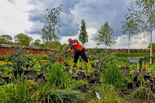 RHS Bridgewater, Europe's 'biggest hands-on horticultural project' opens in Salford