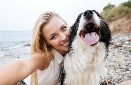 7 of the Most Popular Dog Influencers to Follow on Instagram