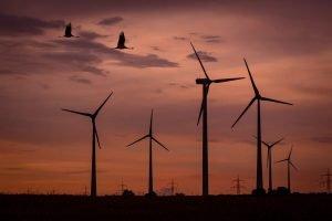 La grande imposture des « énergies renouvelables »