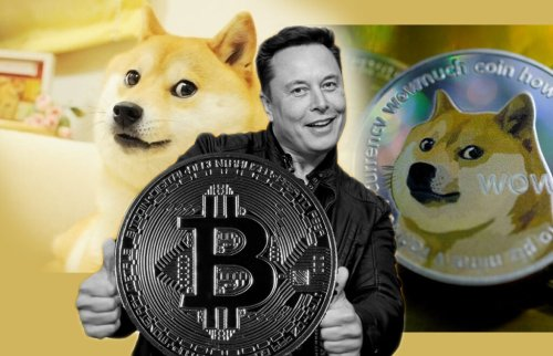 DogeCoin passed 65 cents: Why that excites the internet very, very much