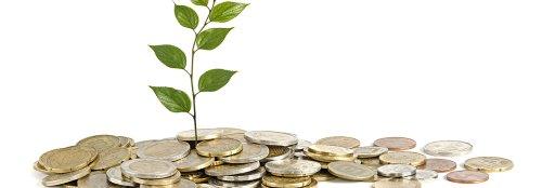 Carbon credits market expanding despite challenges