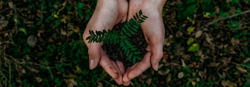 How to get involved in virtual and local Earth Day events