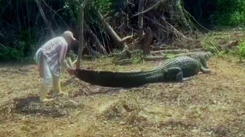 Bolivian River Guide and His 13-Foot-Long Reptile Friend