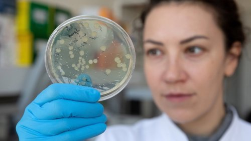 'Flesh Eating' STD Rapidly Spreading in the UK