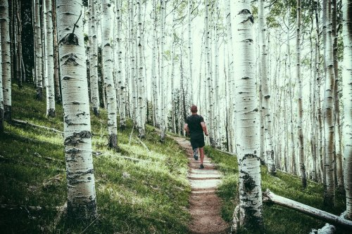 America's 5 Best Destinations for a Summer Running Vacation